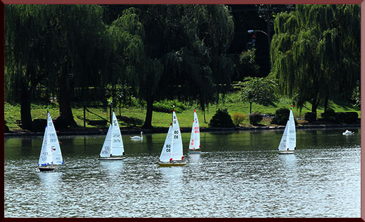 Model yacht racing on a serene day